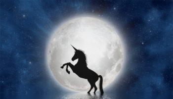 unicorn-3909694